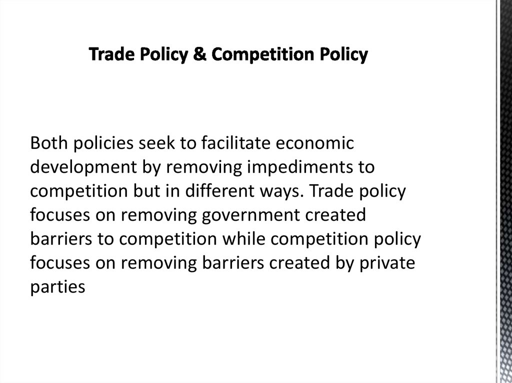 Trade Policy & Competition Policy