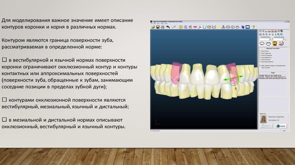 19d53f1c57585 Для моделирования важное значение имеет описание контуров коронки и корня в  различных нормах. Контуром являются граница поверхности зуба,