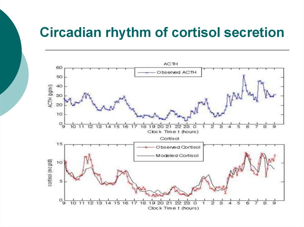 Circadian rhythm of cortisol secretion