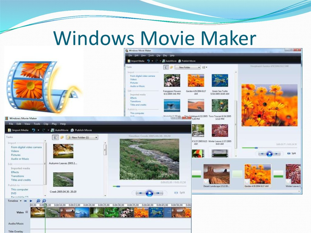 Red young movie maker free xxx