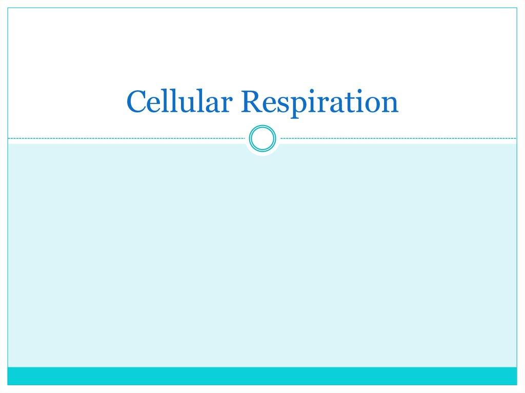 Cellular Respiration Online Presentation