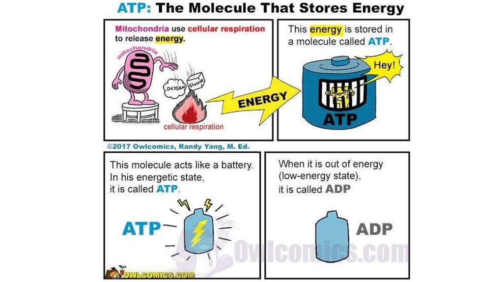 Txu Energy Abilene Tx
