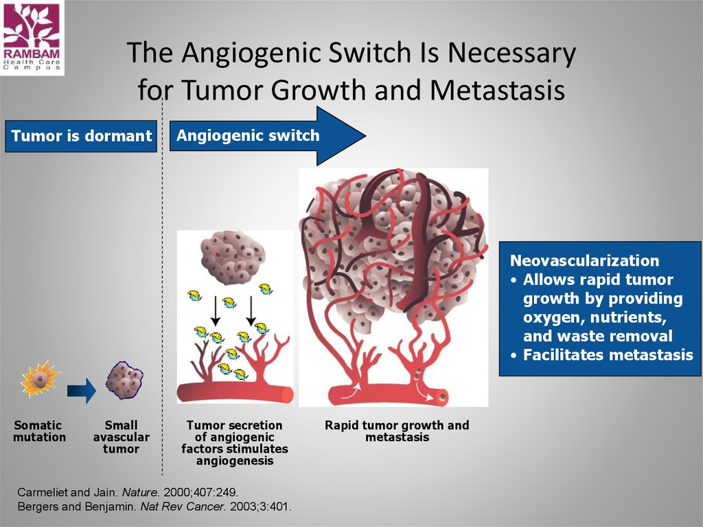 The Angiogenic Switch Is Necessary for Tumor Growth and Metastasis