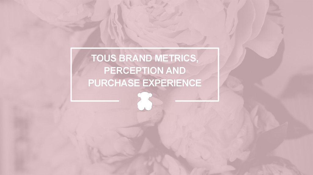TOUS BRAND METRICS, PERCEPTION AND PURCHASE EXPERIENCE