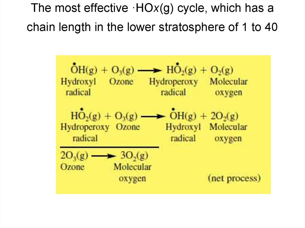 The most effective ·HOx(g) cycle, which has a chain length in the lower stratosphere of 1 to 40