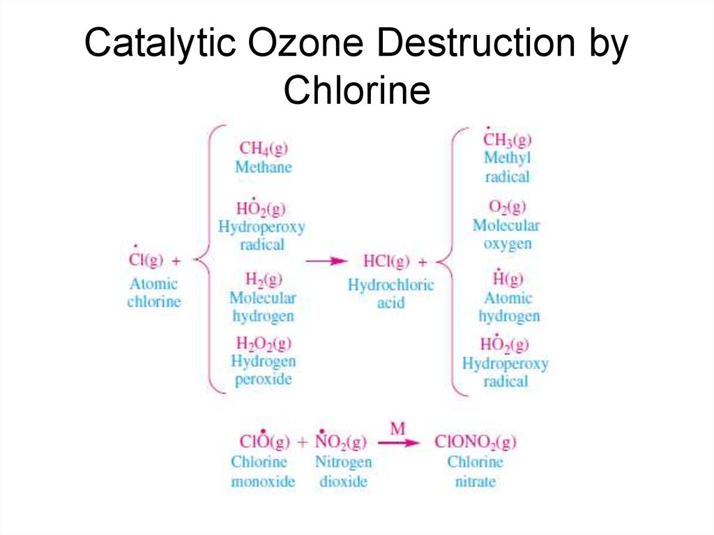 Catalytic Ozone Destruction by Chlorine