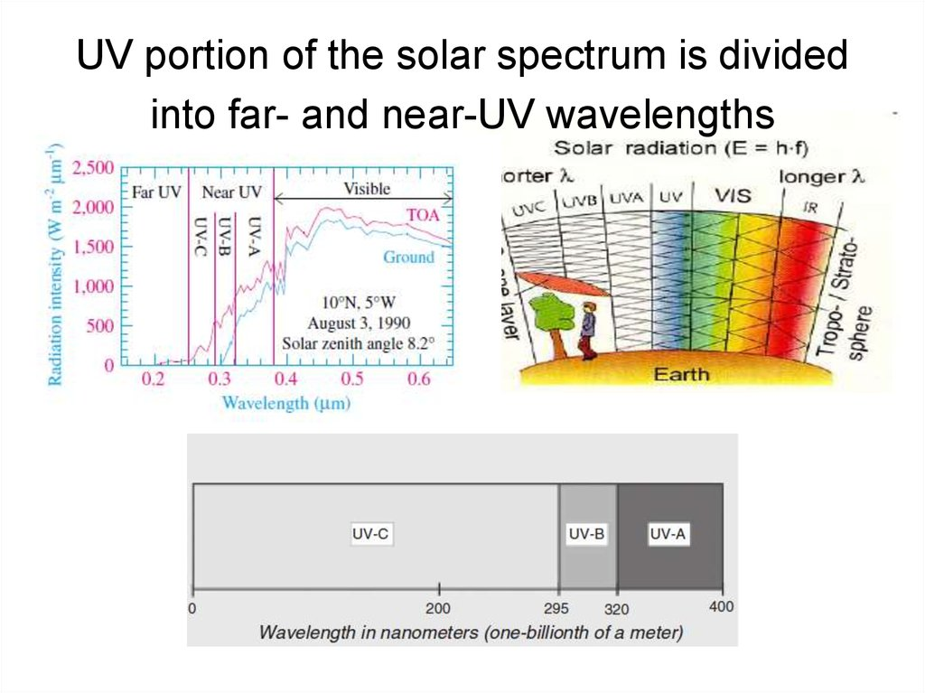 UV portion of the solar spectrum is divided into far- and near-UV wavelengths