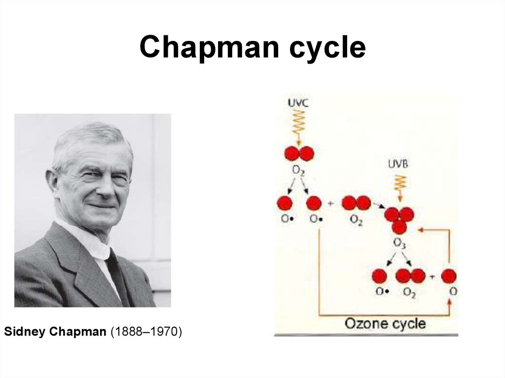 Chapman cycle