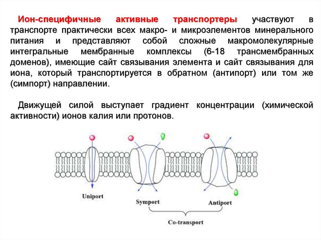 epub кадетские корпуса в россии 1732 1917 гг 2003