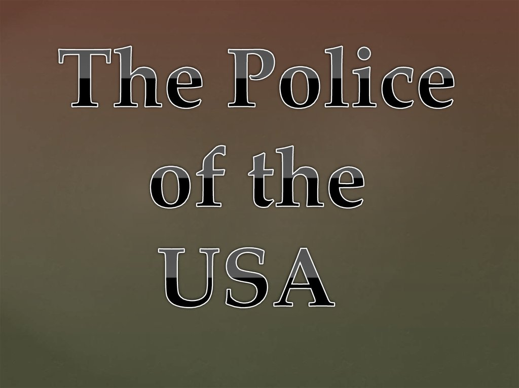 The Police of the USA