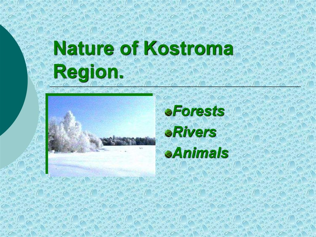 Nature of Kostroma Region.
