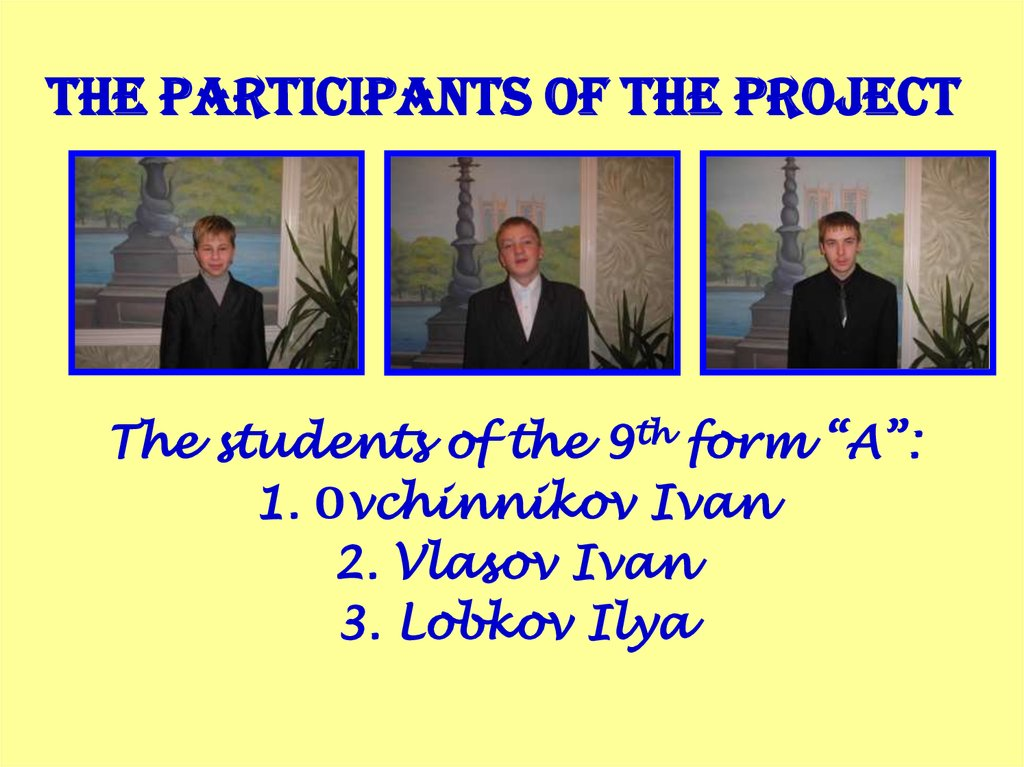 The Participants of the project