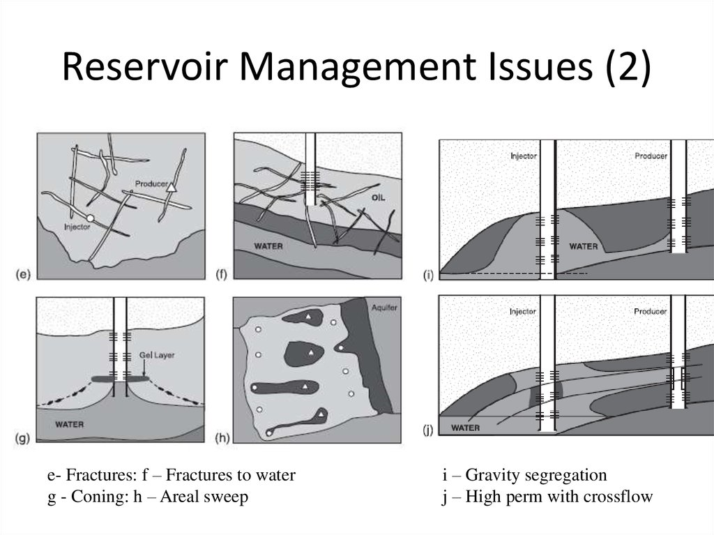 Reservoir Management Issues (1)