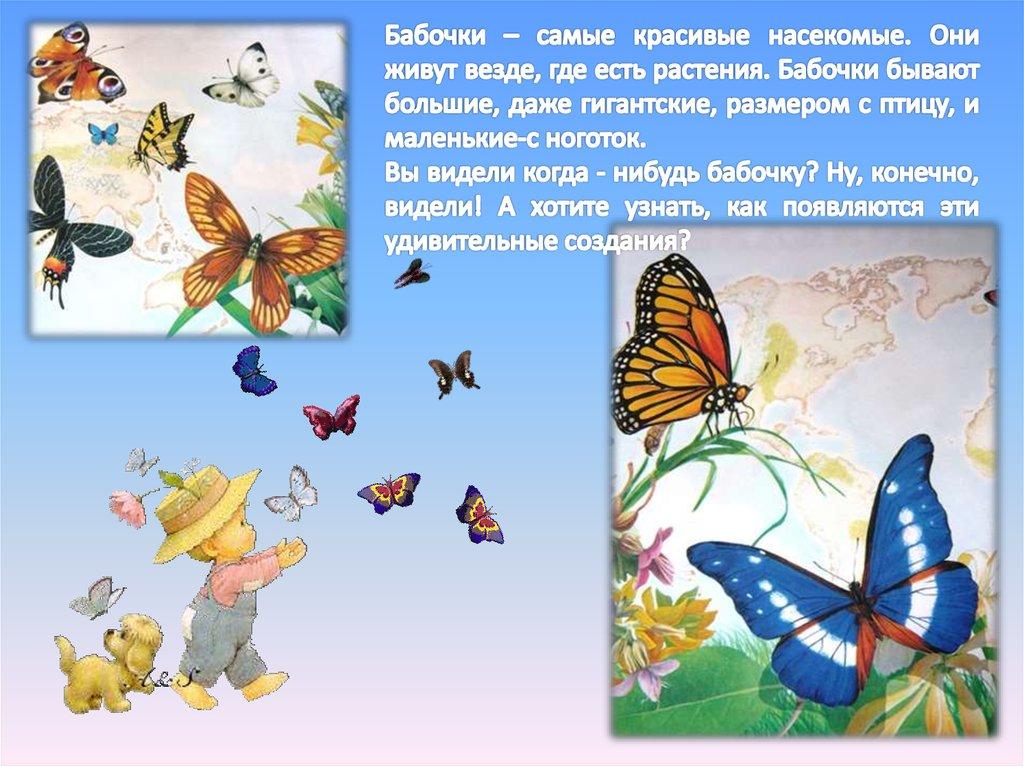 Цыпленок, фото с надписью спасибо за просмотр презентации про бабочек
