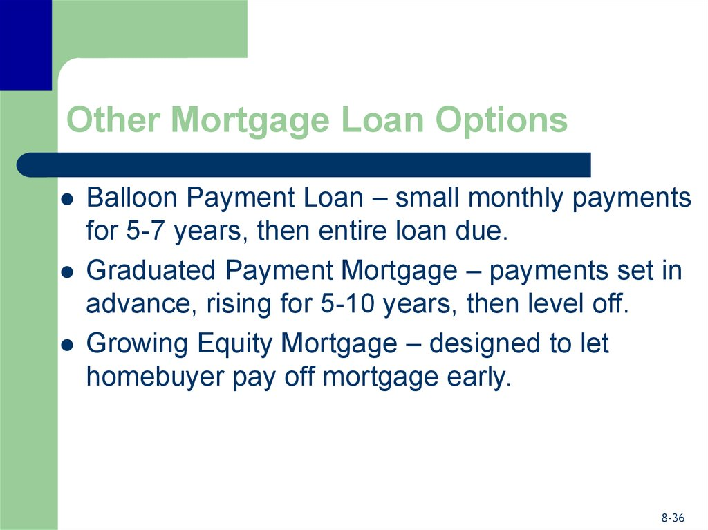 Other Mortgage Loan Options