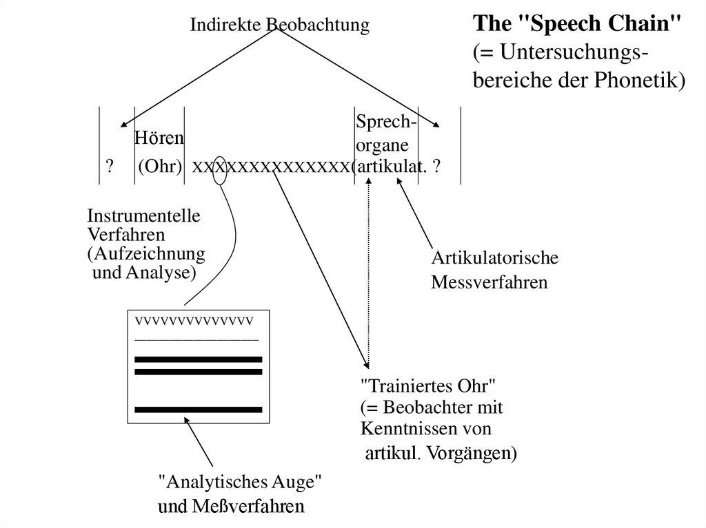 Ziemlich Anatomie Und Physiologie Des Sprechens Und Hörens Fotos ...
