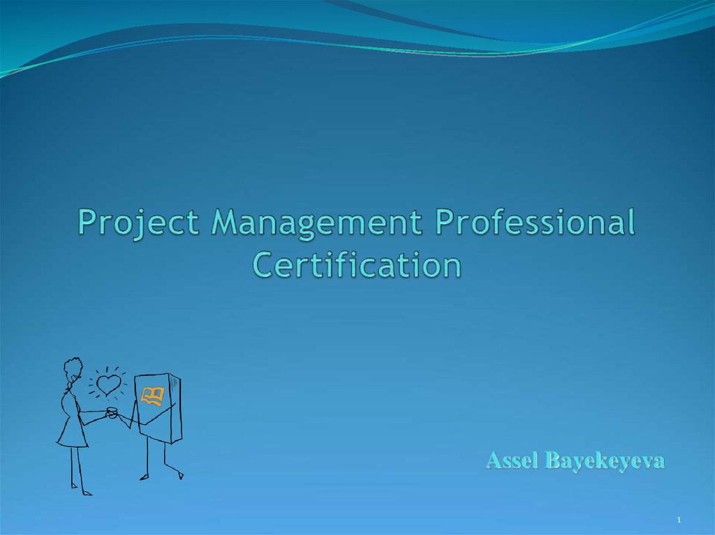 Project Management Professional Certification Online Presentation