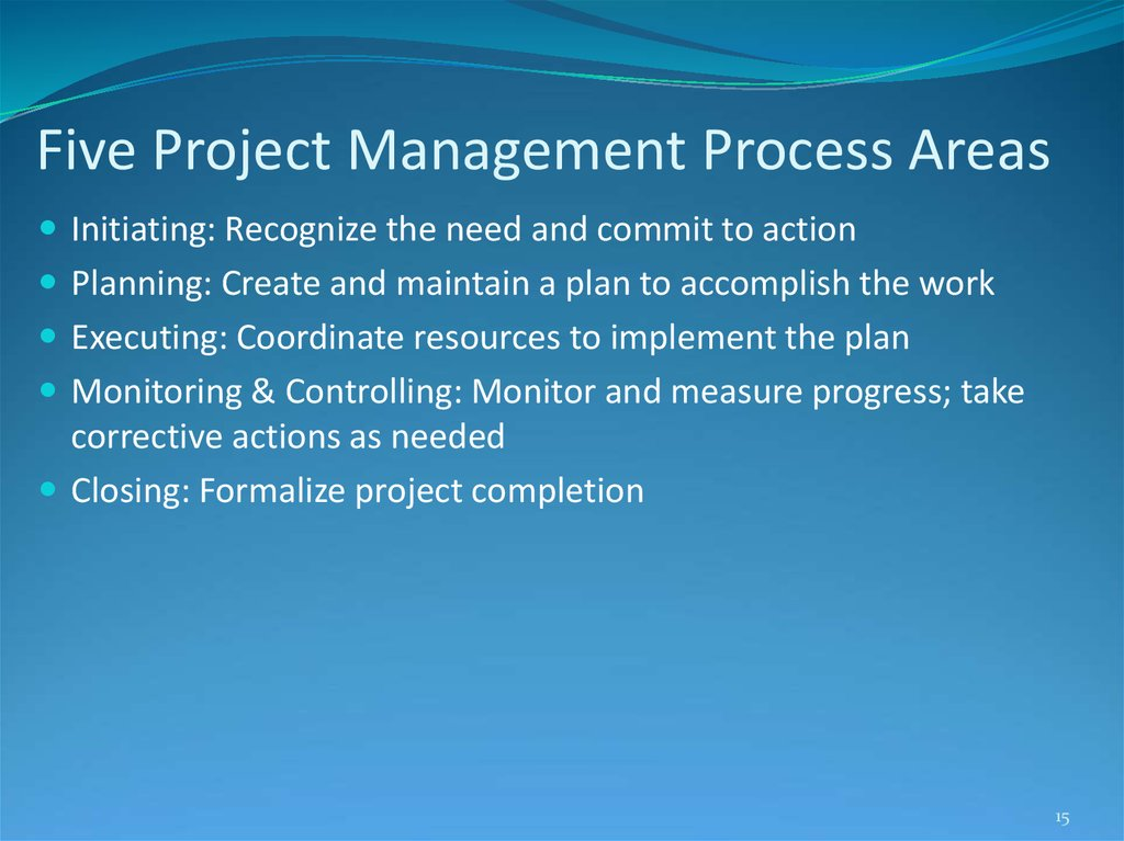 Five Project Management Process Areas