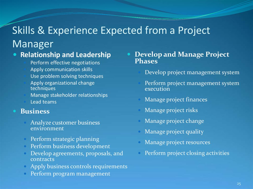 Skills & Experience Expected from a Project Manager
