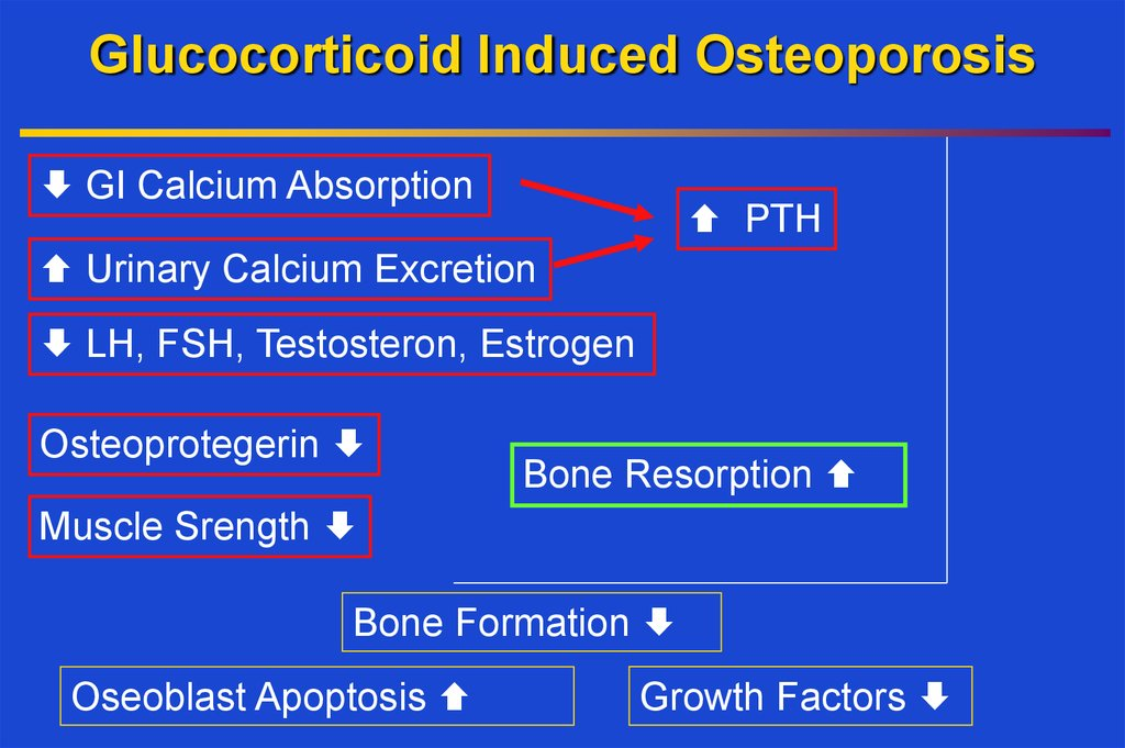 Glucocorticoid Induced Osteoporosis