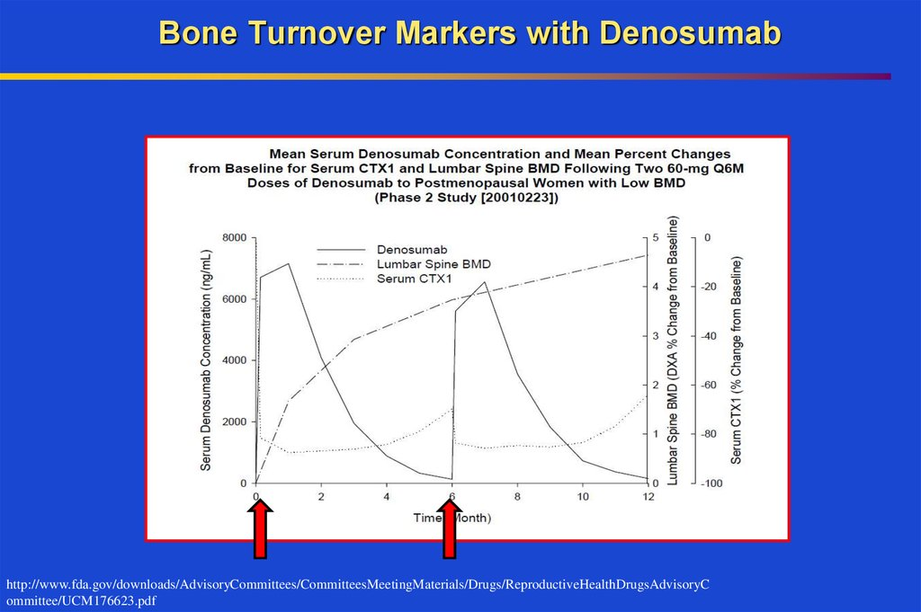 Osteoporosis Diagnosis And Treatment Online Presentation