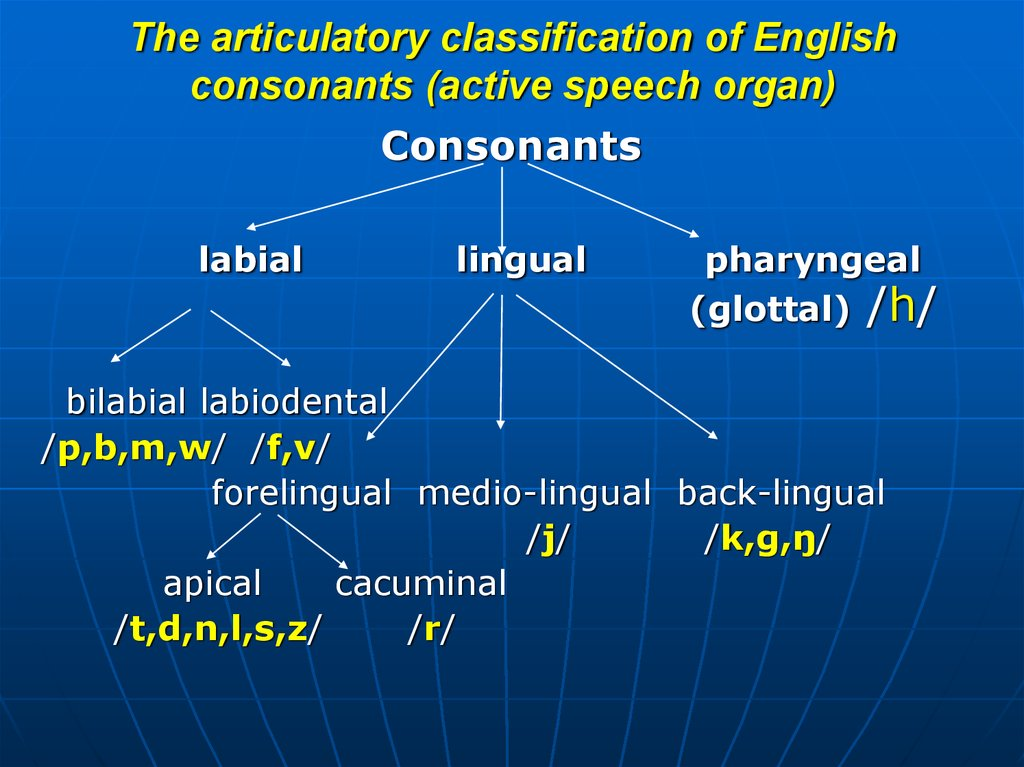 The articulatory classification of English consonants