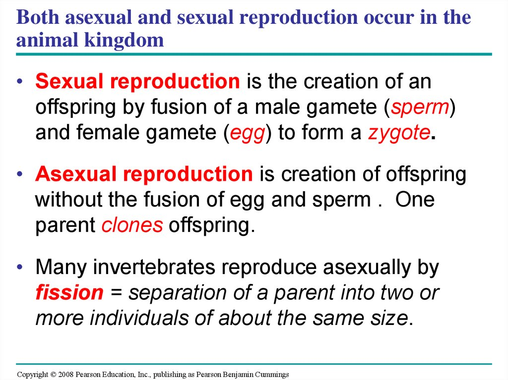 Pdf role of proline and gaba in sexual reproduction of angiosperms