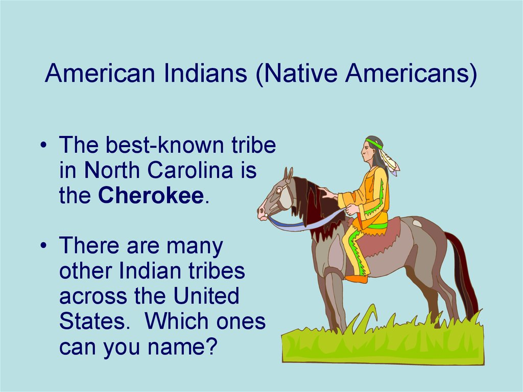 American Indians (Native Americans)