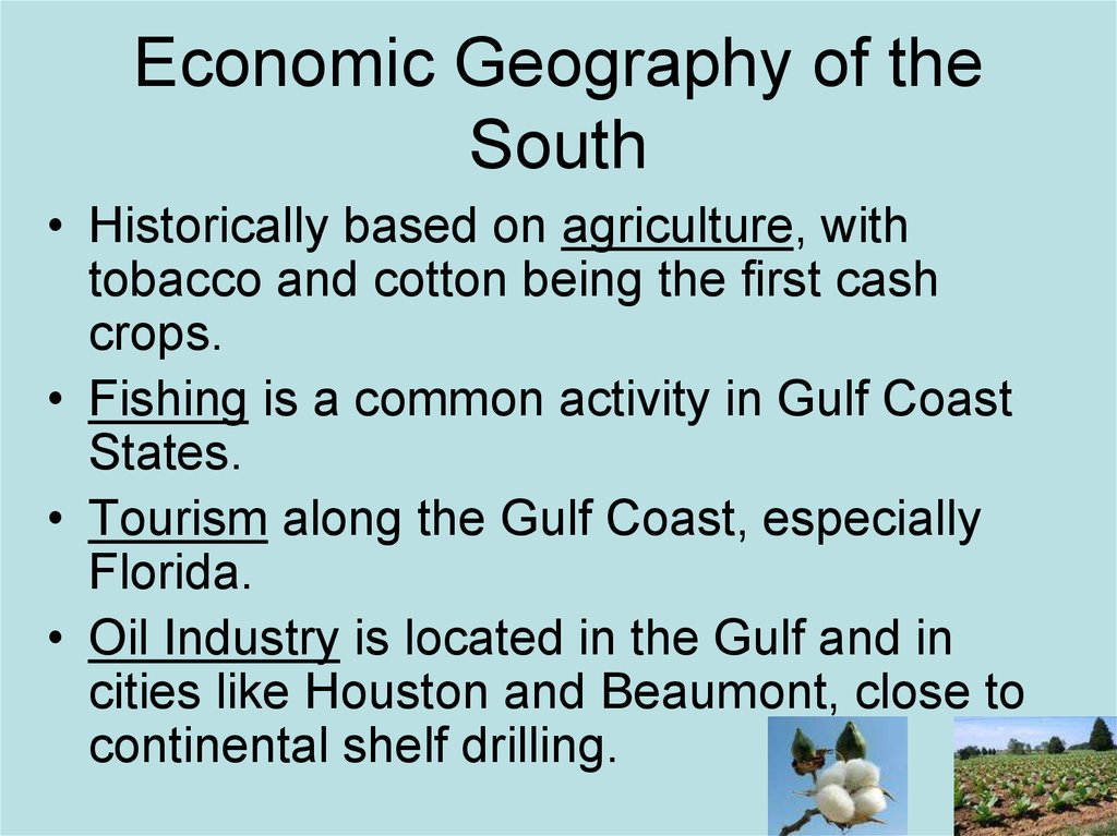 Economic Geography of the South