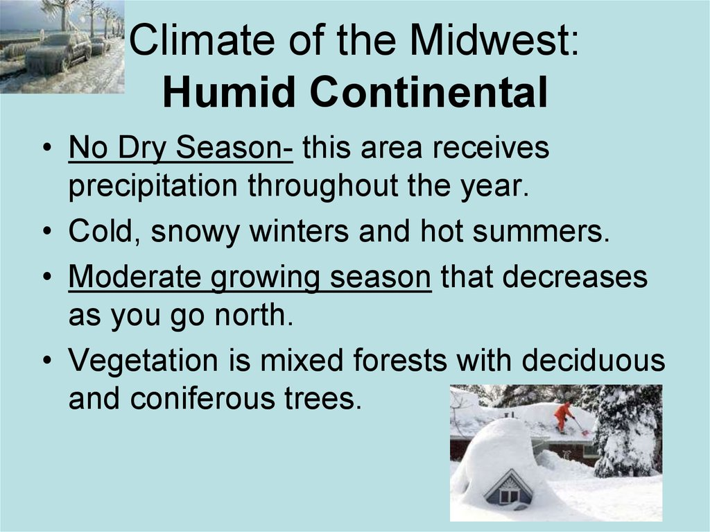 Climate of the Midwest: Humid Continental