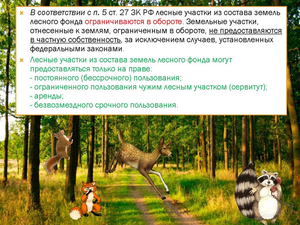 земельные участки лесного фонда