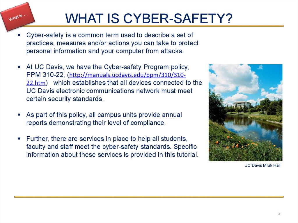 WHAT IS CYBER-SAFETY?