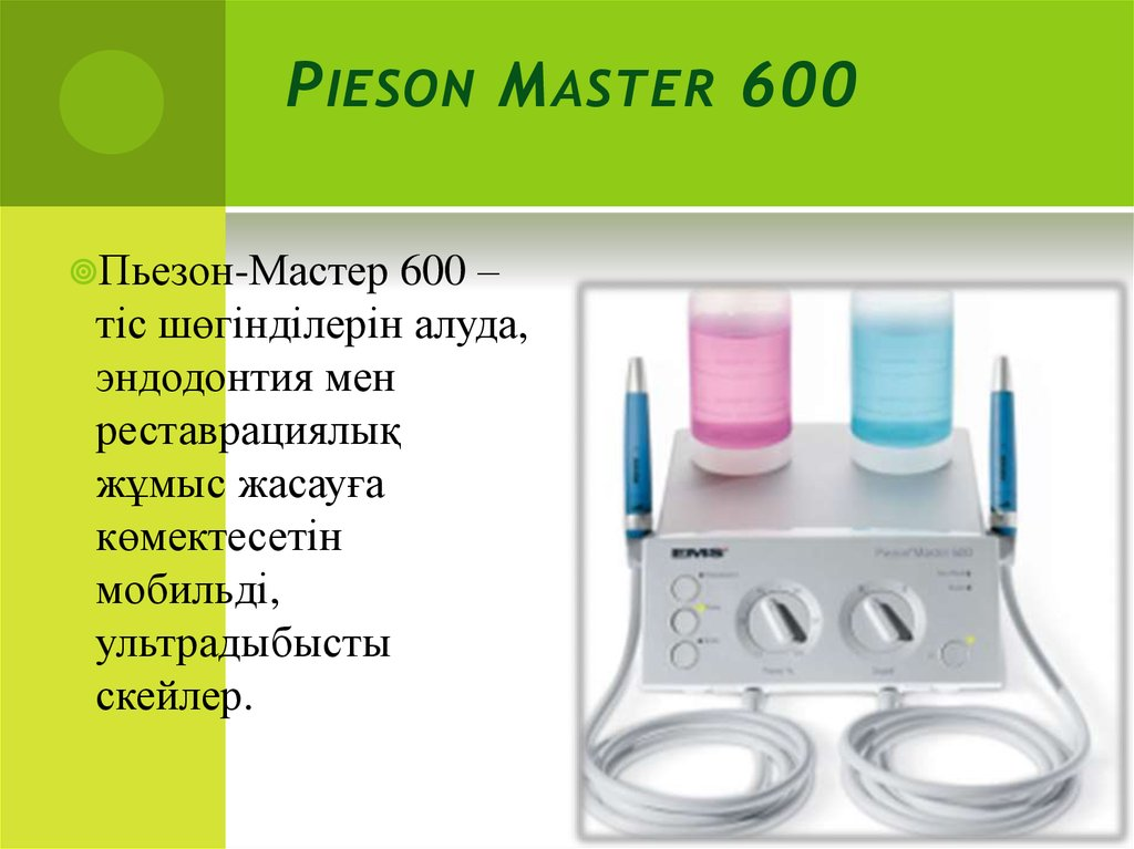 Pieson Master 600