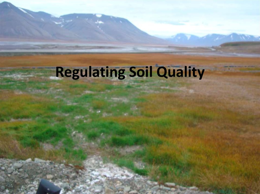 Regulating Soil Quality