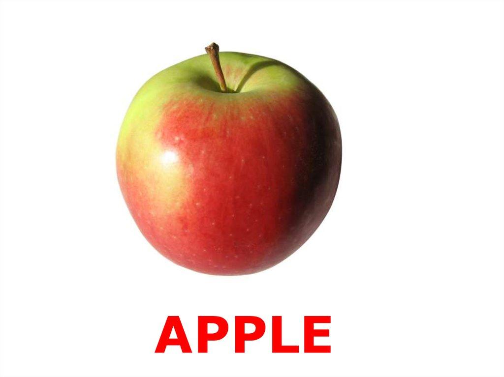 картинки к слову яблоня всех любителей