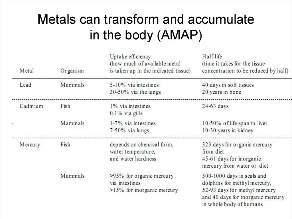 Metals can transform and accumulate in the body (AMAP)