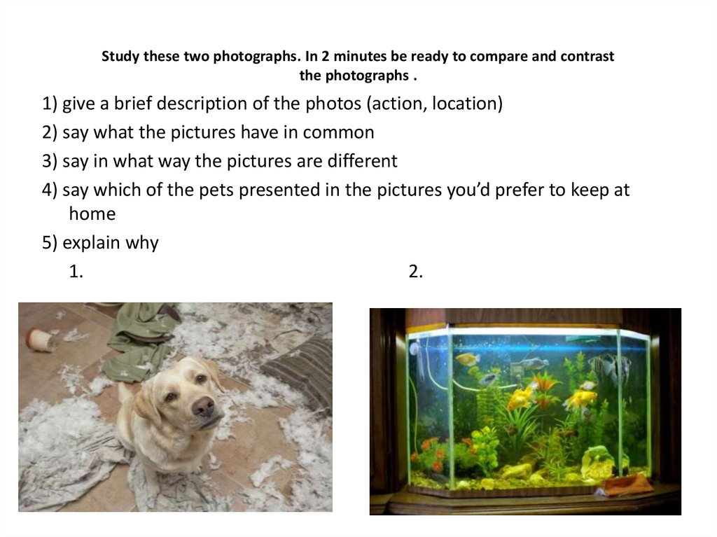 compare and contrast 2 places Compare and contrast the two creatures shown use a venn diagram, then write a written comparison this version has intermediate-ruled lines for students in grades 3 through 5.