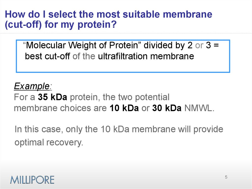 How do I select the most suitable membrane (cut-off) for my protein?