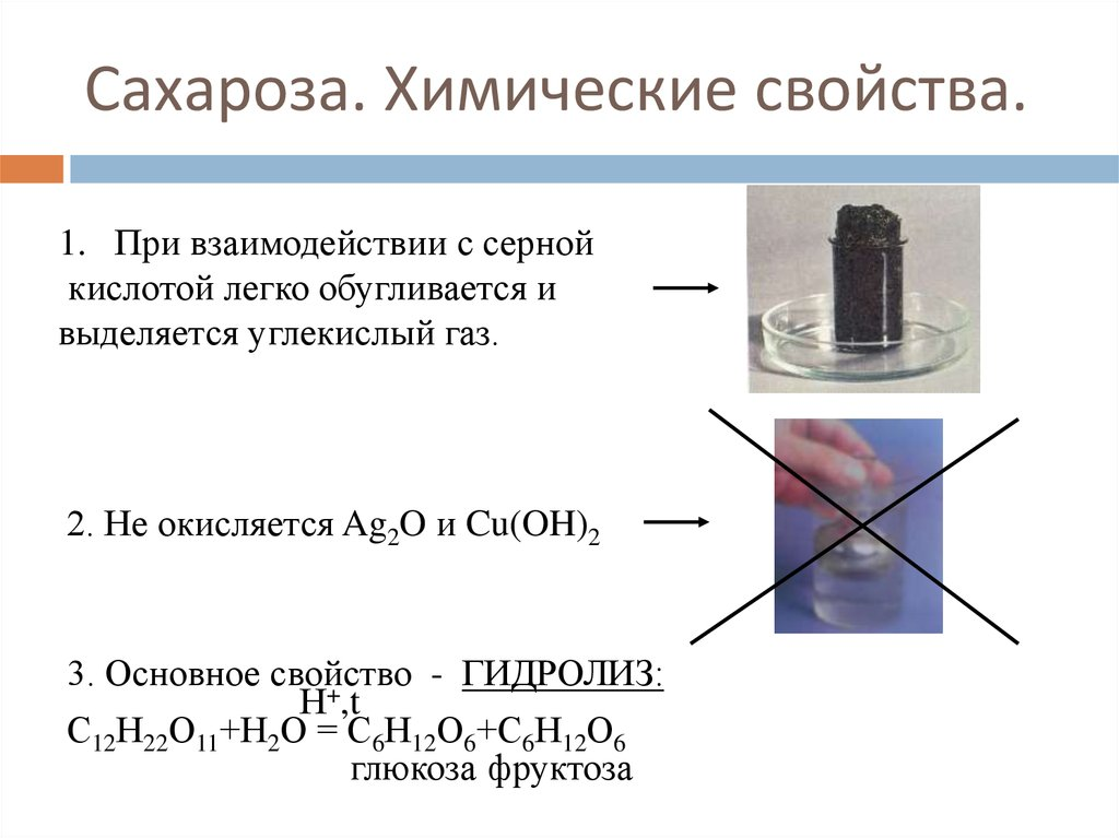 Сахароза свойства физические и химические