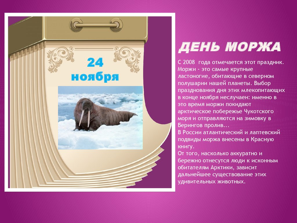 Открытка к дню моржа