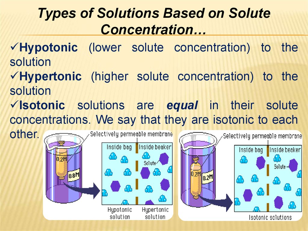 Types of Solutions Based on Solute Concentration…