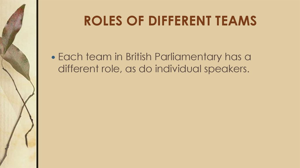 ROLES OF DIFFERENT TEAMS
