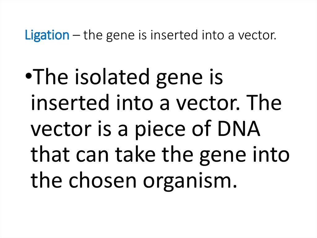 Ligation – the gene is inserted into a vector.