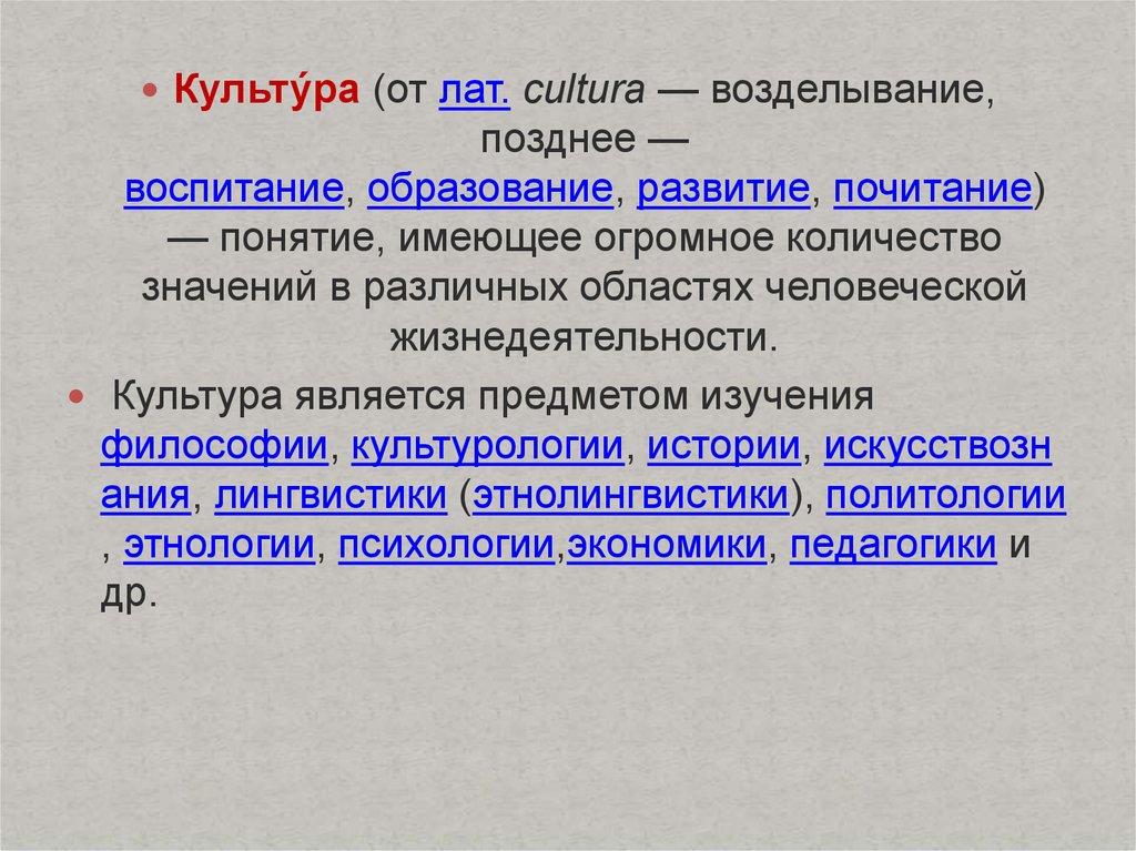 pdf problemas de linguistica