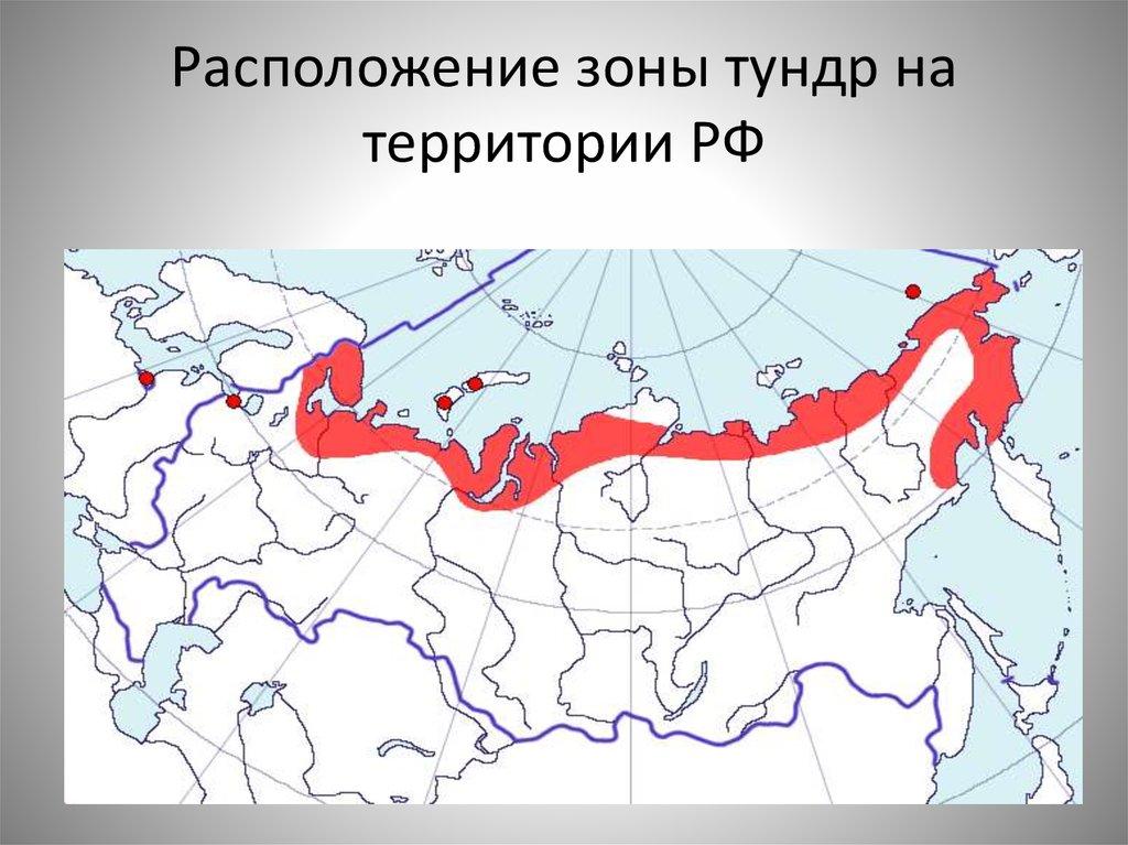 где находится тундра на карте россии фото конечно