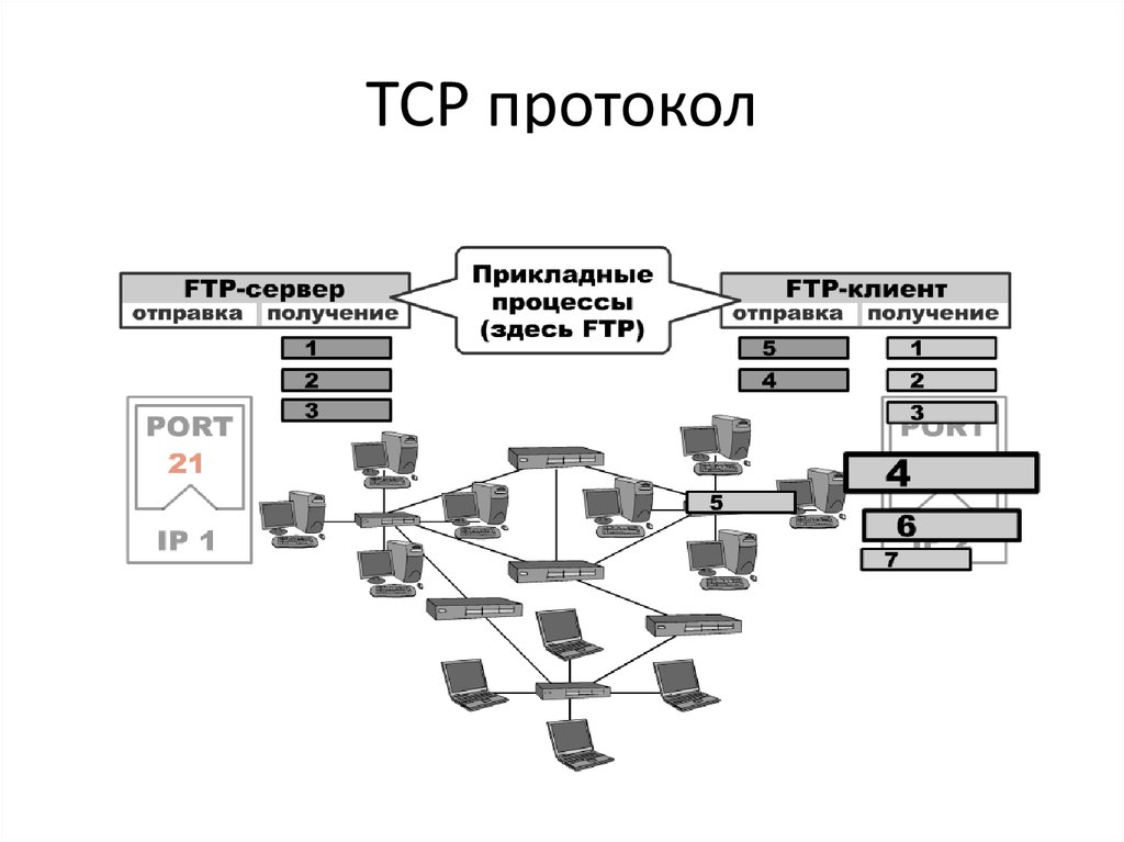 Служба протокола картинка