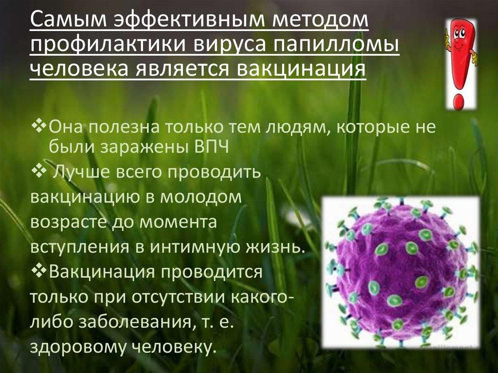 первичная профилактика туберкулеза реферат