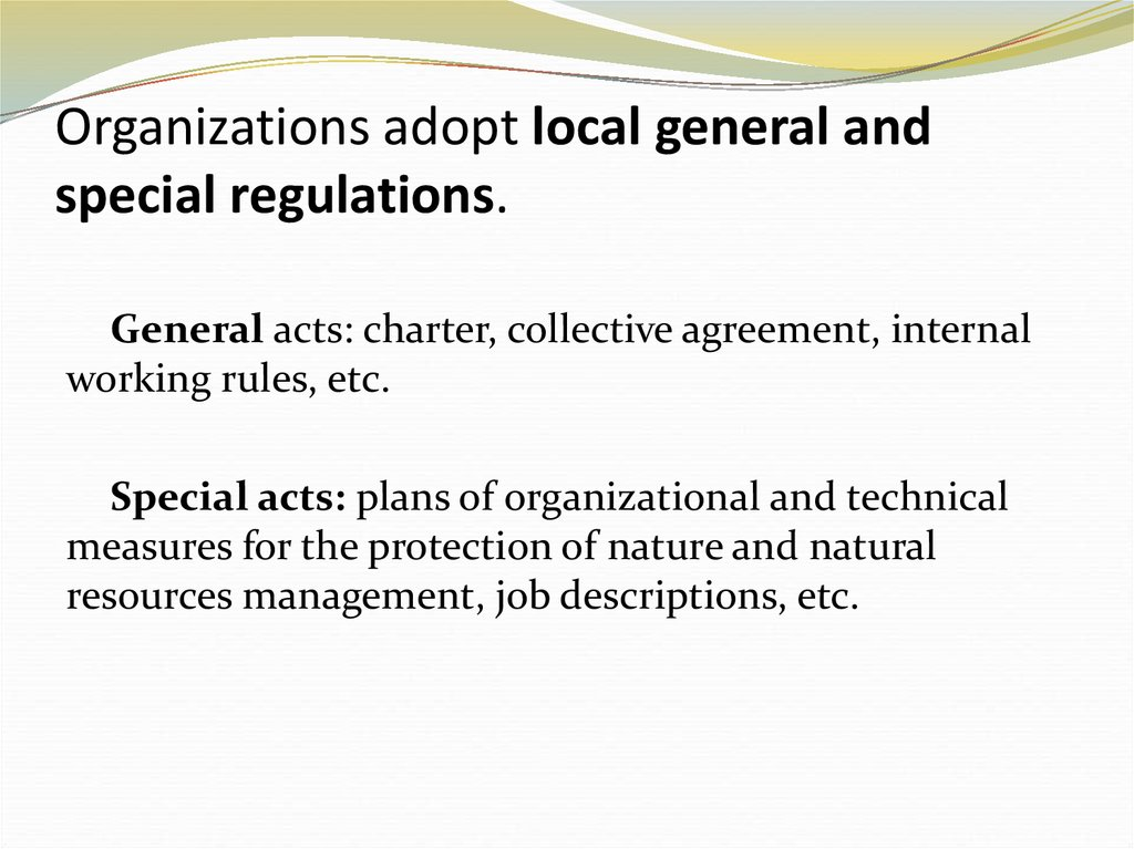 Organizations adopt local general and special regulations.