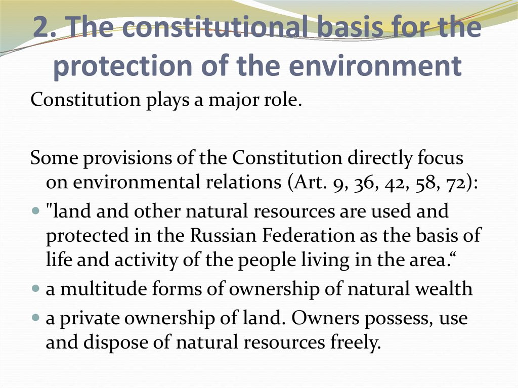 2. The constitutional basis for the protection of the environment