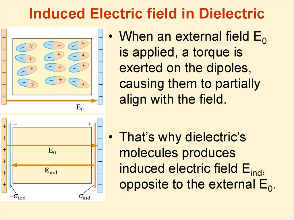 Induced Electric field in Dielectric